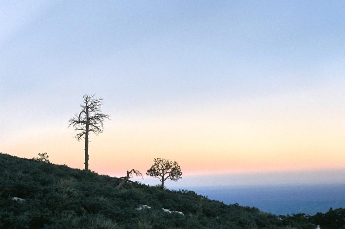 guadalupe peak trail texas